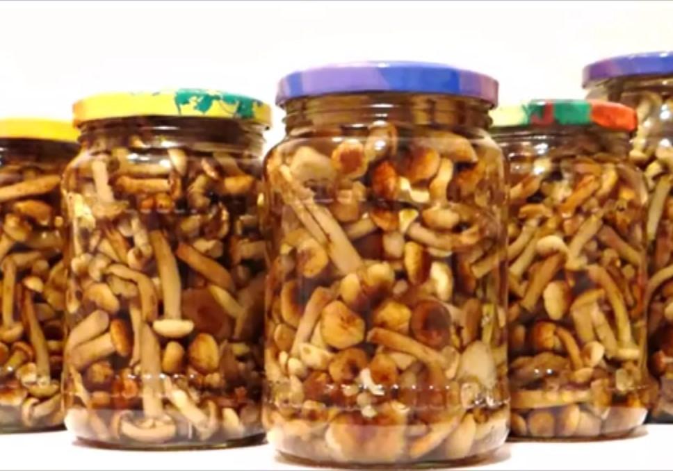 Вкусные Маринованные опята в банках на зиму – пошаговый видео рецепт